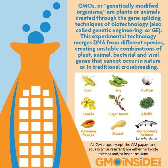 should gmo crops be banned Gmo foods should be labeled updated: tue  government and the gmo industry say these new crops are environmentally safe and that there's no nutritional difference.